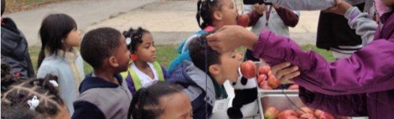 Kindergarten Tea – March 15